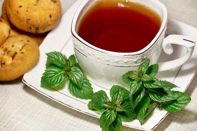 чай с мятой при лактации