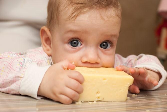 малыш пробует сыр