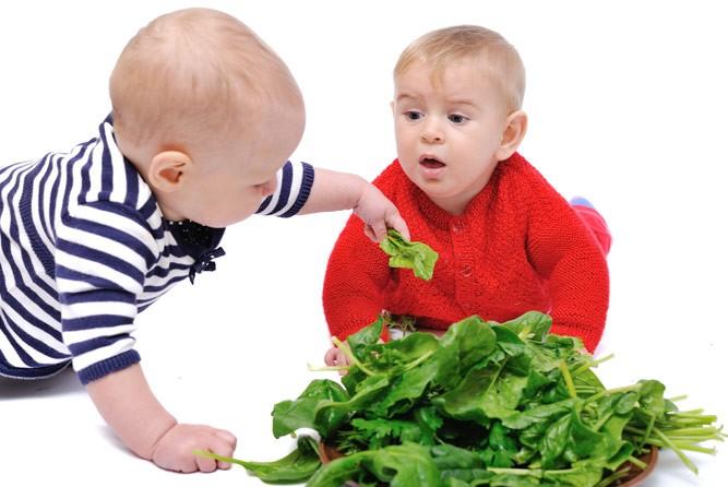 малыши со шпинатом