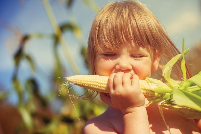 девочка на кукурузном поле