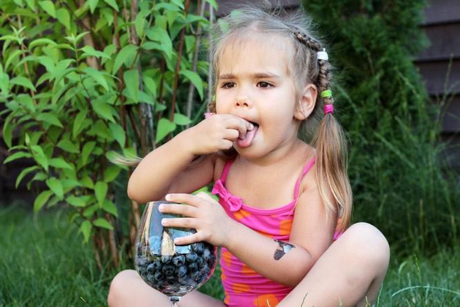 девочка кушает свежую чернику