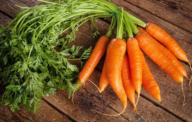 Свежая морковь для детского прикорма