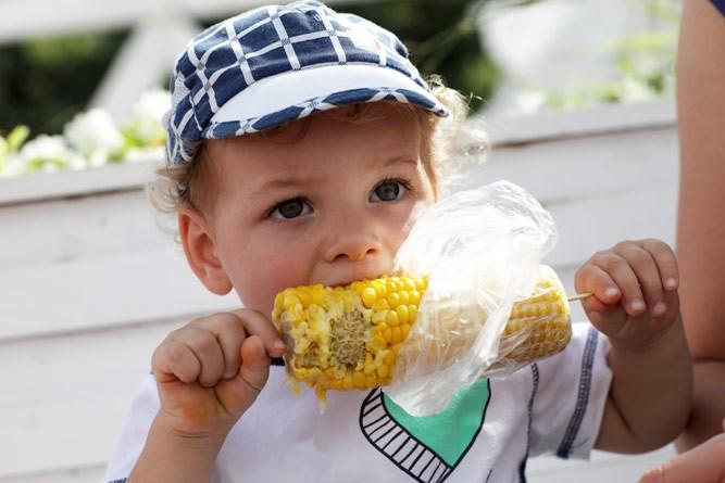 кроха лакомится вареной кукурузой