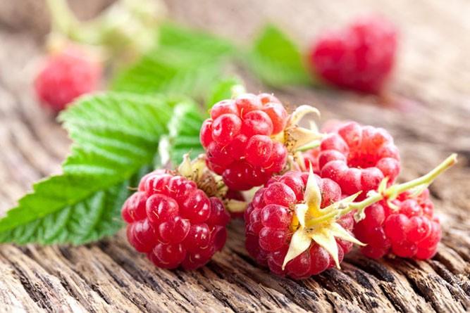 ягода малинка