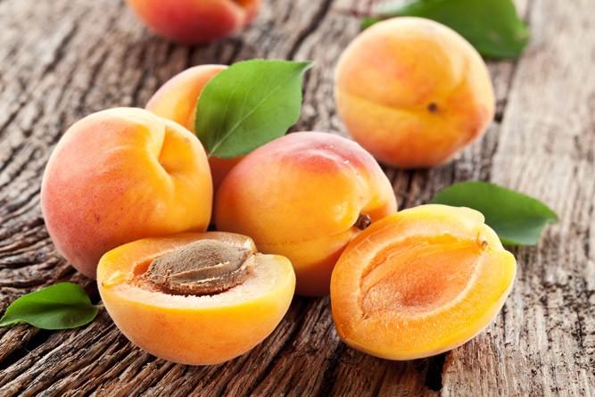 Спелые плоды абрикосового дерева
