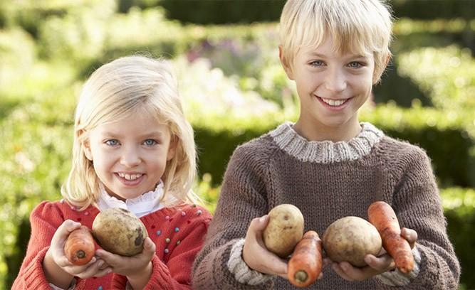 Дети с овощами